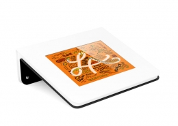 TabLines TWH Design Tablet Wand Halterung